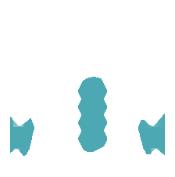 apparel_design_rev